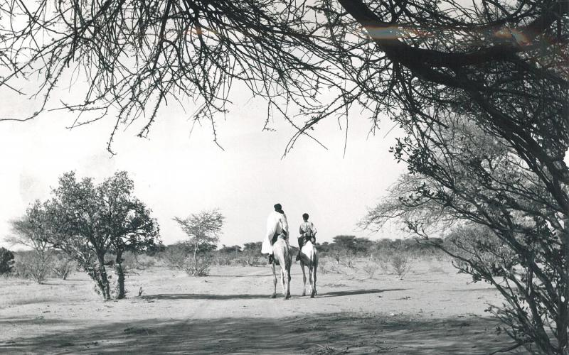 Paisaje de Níger en los años 70 (imagen: Mundo Negro)